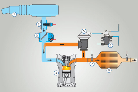 Fehlersuche am Abgasrückführungssystem an Otto- und Dieselmotoren