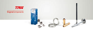 TRW Engine Components products