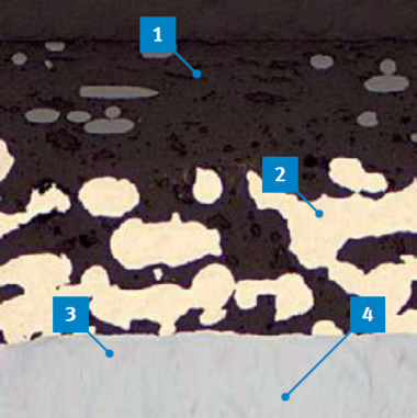 Microsection of P203